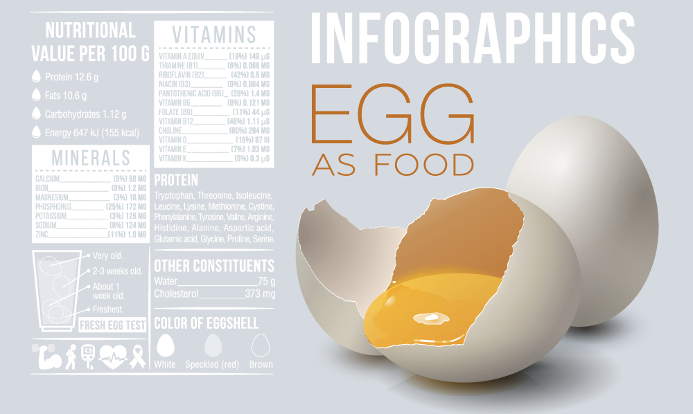 Egg Nutritional Information Infographic